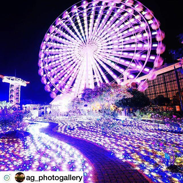 インスタ映え写真 - from Instagram
